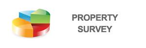 survey-property